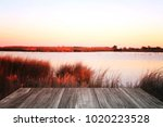 empty texture wooden table with ... | Shutterstock . vector #1020223528