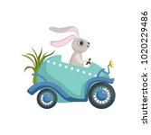 cute little bunny driving... | Shutterstock .eps vector #1020229486