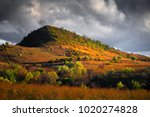 flinders ranges  south australia | Shutterstock . vector #1020274828