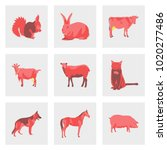 set of vector illustration in... | Shutterstock .eps vector #1020277486