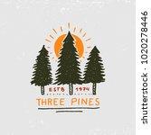 coniferous forest  mountains... | Shutterstock .eps vector #1020278446