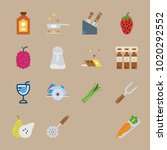icons gastronomy with salt... | Shutterstock .eps vector #1020292552