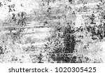 texture grunge. black and white ... | Shutterstock . vector #1020305425