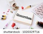 gonorrhea   diagnosis written... | Shutterstock . vector #1020329716
