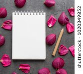 notebook with pencil on the... | Shutterstock . vector #1020349852