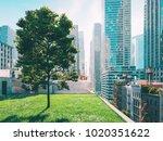 3d rendering. garden in a big... | Shutterstock . vector #1020351622
