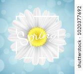 spring seasonal banner.... | Shutterstock .eps vector #1020377692