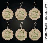 set of retro organic cardboard... | Shutterstock .eps vector #1020378595
