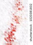 light pink vertical abstract... | Shutterstock . vector #1020381832