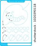 insect. preschool worksheet for ... | Shutterstock .eps vector #1020390118