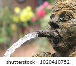 Water Coming From The Mouth Of...
