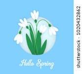spring banner with colored... | Shutterstock . vector #1020432862