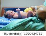 newborn baby bath | Shutterstock . vector #1020434782