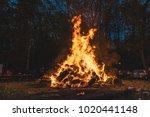 Bonfire Burning Trees At Night...