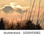 our beautiful planet. sunset | Shutterstock . vector #1020453082