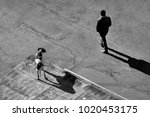 black and white street... | Shutterstock . vector #1020453175
