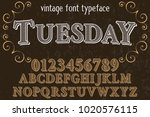 vintage font typeface... | Shutterstock .eps vector #1020576115