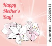 happy mother's day greeting...   Shutterstock .eps vector #1020600658