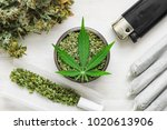 unrolled weed joint and a...   Shutterstock . vector #1020613906