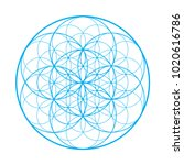 vector sacred geometry... | Shutterstock .eps vector #1020616786