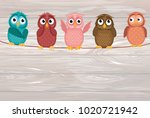 five cute colored owlet sitting ...   Shutterstock .eps vector #1020721942
