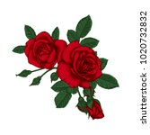 Stock photo beautiful bouquet with red roses and leaves floral arrangement design greeting card and 1020732832