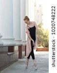 young graceful ballerina...   Shutterstock . vector #1020748222