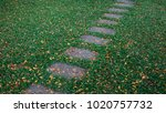 beautiful stepping stone path... | Shutterstock . vector #1020757732