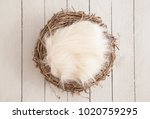 digital newborn backdrop | Shutterstock . vector #1020759295