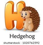 letter h is for hedgehog... | Shutterstock .eps vector #1020762592