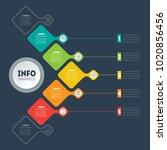 vector infographic of... | Shutterstock .eps vector #1020856456