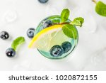 summer refreshment drinks ... | Shutterstock . vector #1020872155