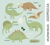 dinosaurs vector design ... | Shutterstock .eps vector #1020902116