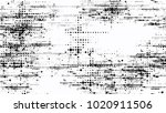 halftone grainy texture with... | Shutterstock .eps vector #1020911506