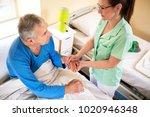 comfort alone patient at... | Shutterstock . vector #1020946348