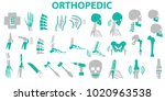 orthopedic and spine symbol... | Shutterstock .eps vector #1020963538