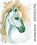 Horse Head Waercolor Painting....