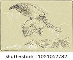 technical sketch of the bird | Shutterstock .eps vector #1021052782