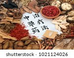 chinese alternative medicine... | Shutterstock . vector #1021124026