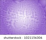 abstract background with... | Shutterstock .eps vector #1021156306