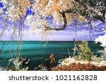 a photo of magic colorful sea... | Shutterstock . vector #1021162828