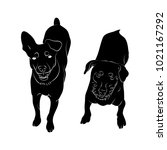 two dogs top view  silhouette... | Shutterstock .eps vector #1021167292