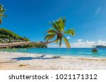 coconut palm tree over the... | Shutterstock . vector #1021171312