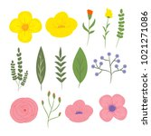 vector floral elements. spring... | Shutterstock .eps vector #1021271086