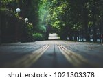 shallow depth of field photo... | Shutterstock . vector #1021303378