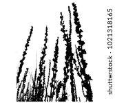 silhouette of grass. flower... | Shutterstock .eps vector #1021318165