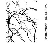 willow branch of salix ...   Shutterstock .eps vector #1021378492