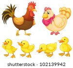 rooster  hen and chicks on... | Shutterstock . vector #102139942