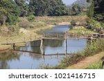 wood bamboo bridge   Shutterstock . vector #1021416715
