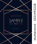 geometric classic design... | Shutterstock .eps vector #1021492228